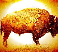 Bison 11 by Miles Glynn