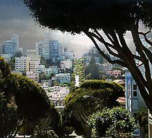 Landscape on Lombard Street, San Francisco by Elizabeth Bravo