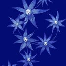 Starflowerfaces by Hannah Baker - Jamface
