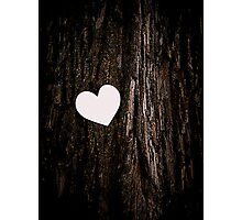 Heart & Tree Photographic Print