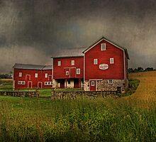 Maple Row Farm by Pat Abbott