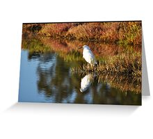 Egret in Marin Greeting Card