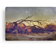Pleading for Life Canvas Print