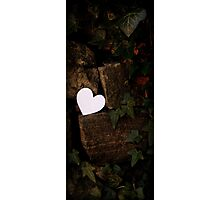 Heart in Ivy Photographic Print