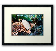 Forest Floor Framed Print
