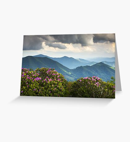 Blue Ridge Appalachian Mountain Peaks and Spring Rhododendron Flowers Greeting Card