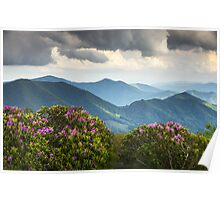 Blue Ridge Appalachian Mountain Peaks and Spring Rhododendron Flowers Poster