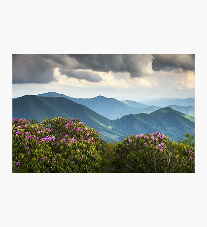 Blue Ridge Appalachian Mountain Peaks and Spring Rhododendron Flowers Photographic Print