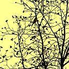 Solitude by Shelly Cimoli