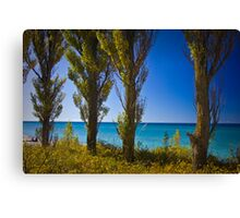 Row of Cypress Trees at Point Betsie Canvas Print