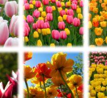 Tulips Montage 1 Sticker