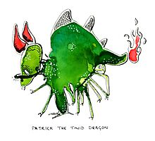 Patrick the timid dragon Photographic Print