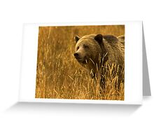 Grizzly Sow-Signed-#1654 Greeting Card