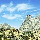 Beautiful New Mexico Mountains by NIKULETSH