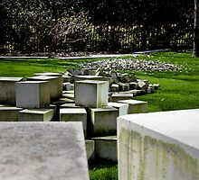 Through the stone blocks by Rafiul Alam