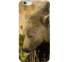 Grizzly Sow-Signed-#5036 iPhone Case/Skin