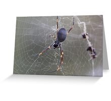 Wicked Web Greeting Card
