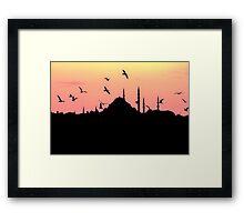 Seagulls over Istanbul  Framed Print