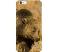 Grizzly Sow-Signed-#5216 iPhone Case/Skin