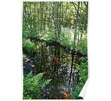 The Trout Stream Poster