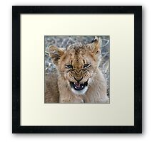 Ugh ! There Is A Bug In My Mouth Framed Print