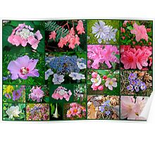 Floral Collage 2 Poster