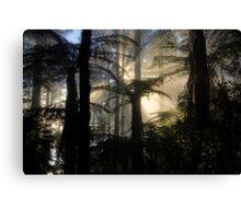 Through the Ferns Canvas Print