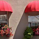 Twin Windows in the Sun by Gerda Grice