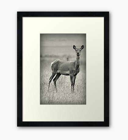 Hello. Framed Print