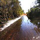 The magic of Arnhem Land - fording the creek by georgieboy98