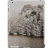 Winter Forest iPad Case/Skin