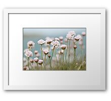 St. Ives Thrift Textured Framed Print