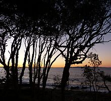 Noosa by PhotosByG