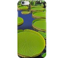 Water Platters iPhone Case/Skin