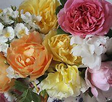 ROSESE 16THJUNE by Gea Austen