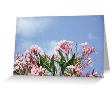 Nerium Oleander Greeting Card