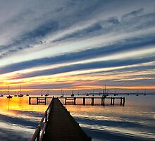 Griffins Gully Panorama - Geelong by Hans Kawitzki