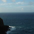 Kilauea Lighthouse, Kauai, Hawaii by swanny