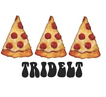 tridelt pizza by lindsb330
