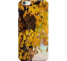 The Maple Tree in Autumn iPhone Case/Skin