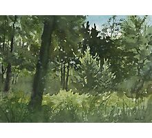 Plein Air 4 Photographic Print