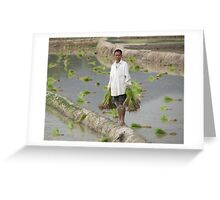 Planting Rice in Rural Laos Greeting Card