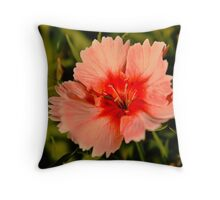 Strawberry Parfait Dianthus  Throw Pillow