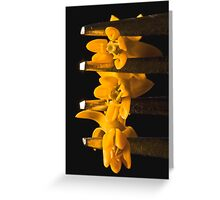 Looking Delicious Greeting Card