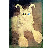 Nobody loves me because I have a big nose, but I do have beautiful eyes. Photographic Print