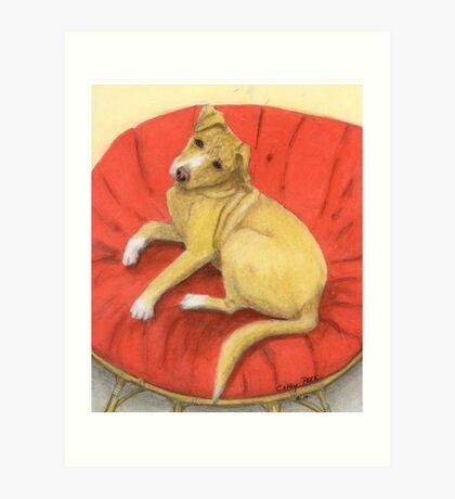 Pitbull Lab Mix Puppy Dog Cathy Peek Pets Art Print