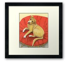 Pitbull Lab Mix Puppy Dog Cathy Peek Pets Framed Print