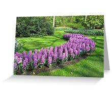Purple Pride - Bed of Hyacinths in the Keukenhof Greeting Card