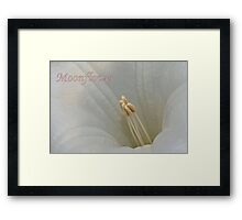 Moonflower Macro Framed Print