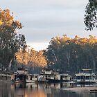 Murray River at Echuca Victoria Australia by Tony Theobald